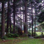 Stick Camp Canada Grounds